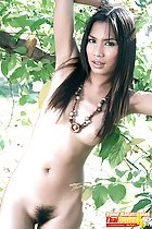 Naked with arms raised long hair obscuring her tits thick bush